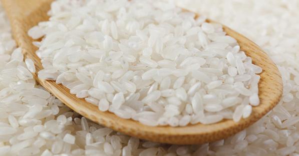Variedad de arroz del Delta del Ebro