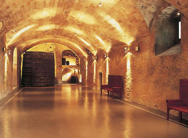Salón amplio para celebraciones en La Boella Tarragona