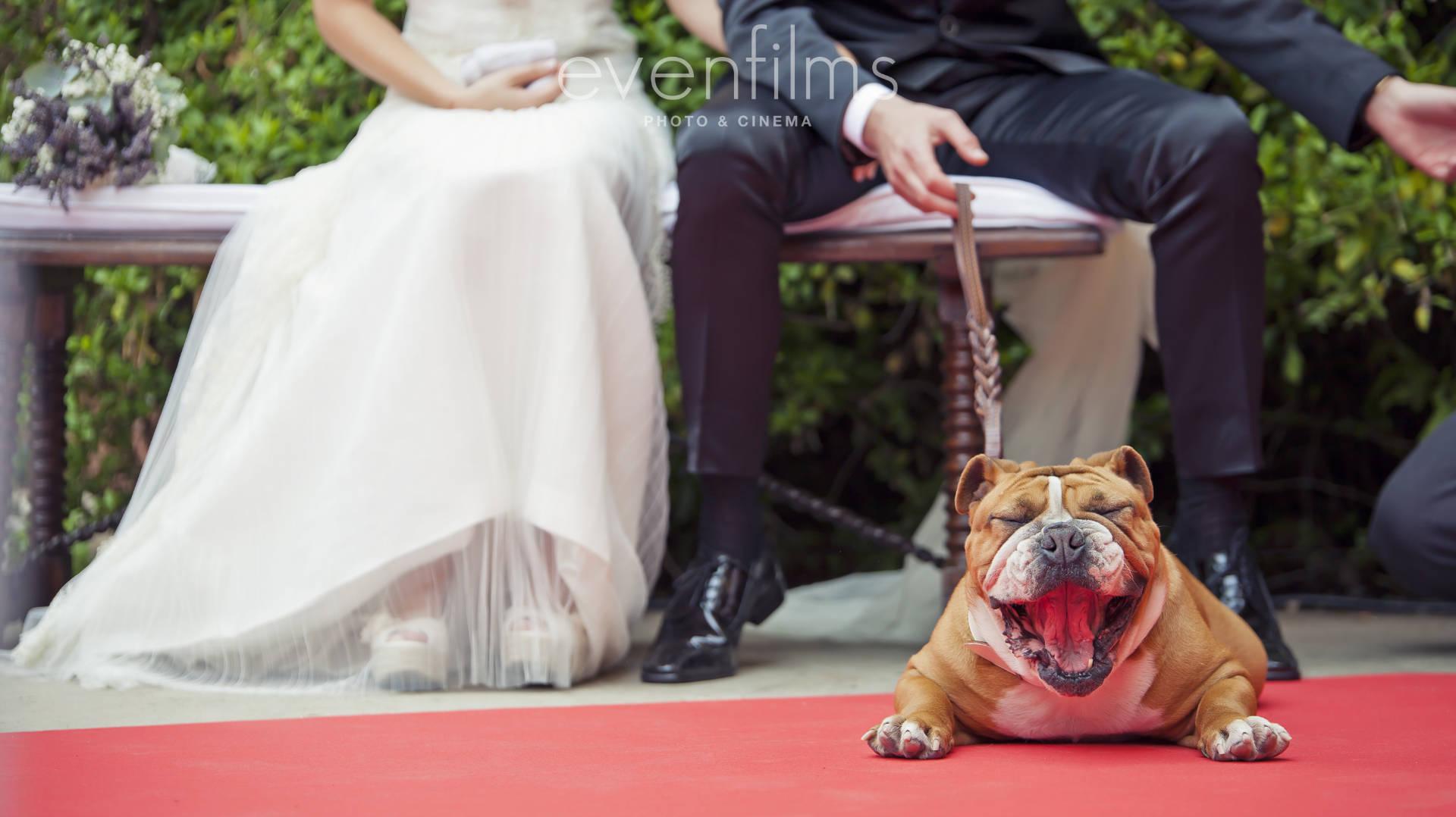 Espacio para bodas en Tarragona
